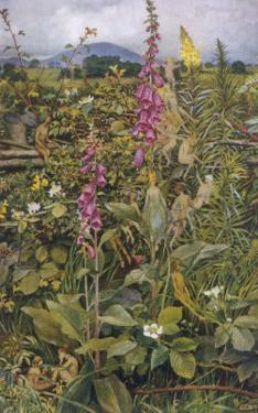 Naked Fairies Among the Foxgloves in Ancient Britain by Eleanor Fortescue Brickdale