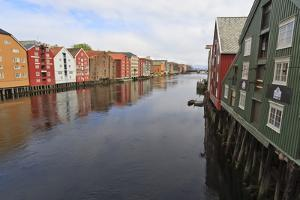 Colourful Wooden Warehouses on Wharves Beside the Nidelva River by Eleanor Scriven