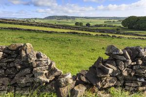 Dry Stone Wall, with View across a Beautiful Typical Country Landscape in Spring by Eleanor Scriven