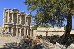 Facade of the Library of Celsus, Fruit Tree and Ancient Pipes, Ancient Ephesus by Eleanor Scriven
