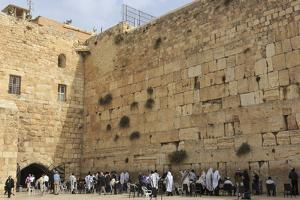 Men's Section, Western (Wailing) Wall, Temple Mount, Old City, Jerusalem, Middle East by Eleanor Scriven