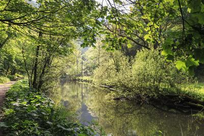 River Wye Lined by Trees in Spring Leaf with Riverside Track, Reflections in Calm Water