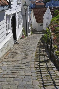 Steep Cobbled Street and White Wooden Houses by Eleanor Scriven