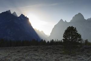 View Down Cascade Canyon with Backlit Teton Range by Eleanor