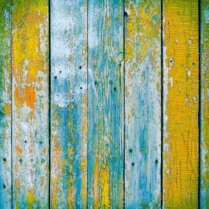 Old Wooden Planks Painted with Paint Cracked by a Rustic Background by Elena Larina