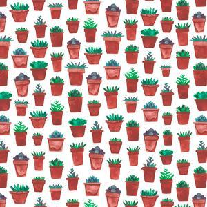 Succulent Pots by Elena O'Neill
