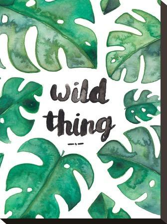 Tropical Wild Thing