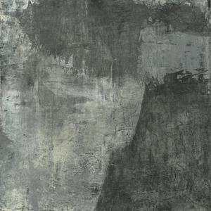 Gray Abstract I by Elena Ray