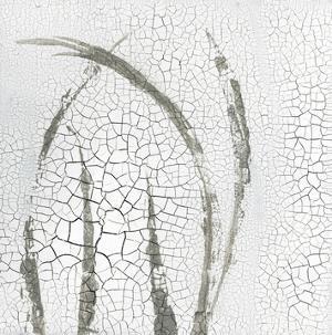Minimalism III by Elena Ray