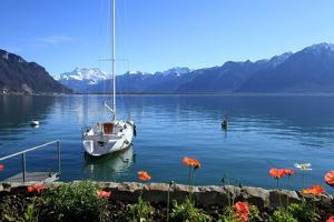 Geneva Lake Scenery, Switzerland by Elenarts
