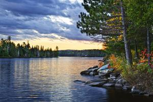 Dramatic Sunset and Pines at Lake of Two Rivers in Algonquin Park, Ontario, Canada by elenathewise