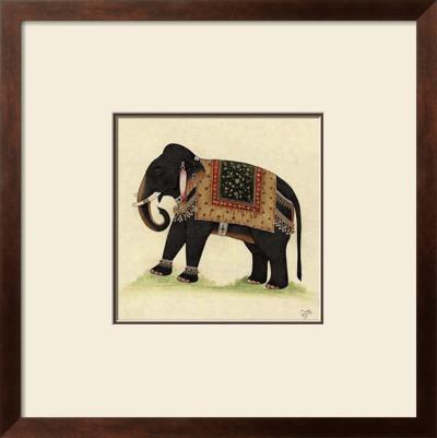Elephant from India II