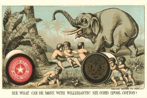 Elephant Pulling over Column