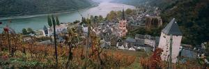 Elevated View of Bacharach and the Rhine River in Autumn, Rhineland-Palatinate, Germany