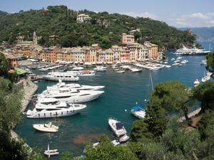 Elevated view of the Portofino, Liguria, Italy