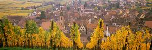 Elevated View of the Riquewihr and Vineyards in Autumn, Alsace, France
