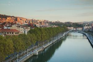 Elevated view of the Zubizuri bridge on Nervion River, Bilbao, Biscay Province, Basque Country R...