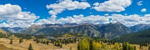 Elevated view of trees on landscape from Molas Pass on U.S. Route 550, Silverton, San Juan Mount...