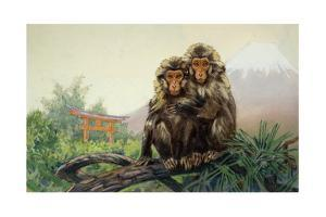 Painting of a Pair of Japanese Macaques with Mount Fuji in Distance by Elie Cheverlange