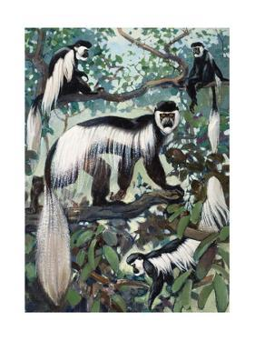 Painting of Guereza Monkeys in Treetops by Elie Cheverlange