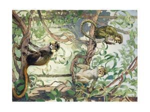 Painting of Mustache and Talapoin Guenon Monkeys in Treetops by Elie Cheverlange