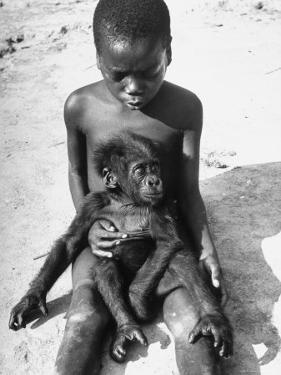 Baby Gorilla Named Bobo is Being Held by a Local Youngster by Eliot Elisofon