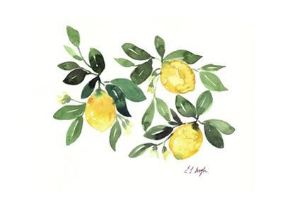 Lemons and Leaves by Elise Engh