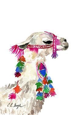 Little Llama by Elise Engh