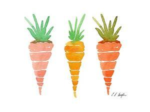 Three Carrots by Elise Engh
