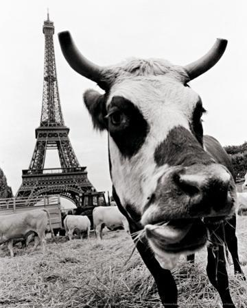 A Farmers Demonstration in Paris by Elise Hardy