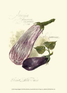 Aubergine Eggplant by Elissa Della-piana