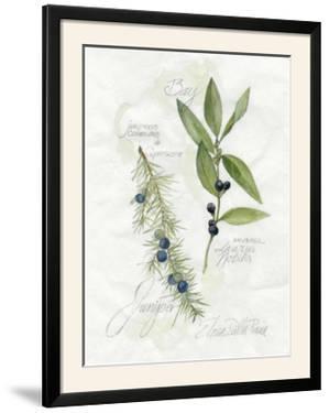 Bay Leaf and Juniper by Elissa Della-piana