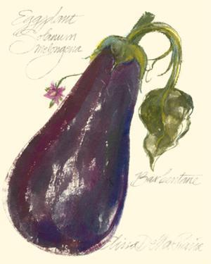 Eggplant Solanum Melongena by Elissa Della-piana