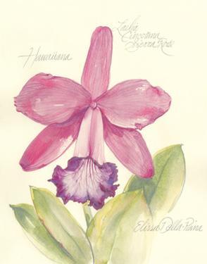 Elissa's Garden V by Elissa Della-piana