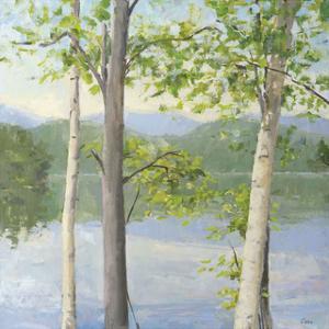 Cooper Lake II by Elissa Gore