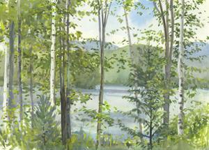 Summer Lake IV by Elissa Gore
