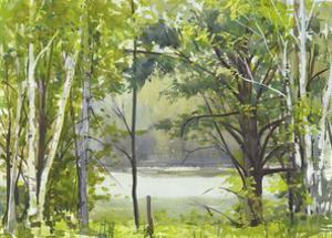 Summer Lake VI by Elissa Gore