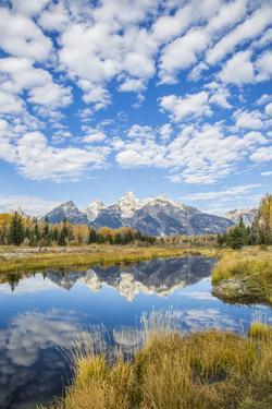 Wyoming, Autumn Color Along Snake River at Schwabacher Landing with Teton Mountains as a Backdrop by Elizabeth Boehm