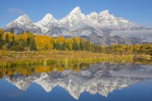 Wyoming, Grand Teton NP. Fresh snowfall covers the Grand Teton Mountains on an autumn morning by Elizabeth Boehm