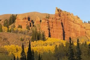 Wyoming, Sublette County. Wyoming Range, colorful autumn aspens are surrounding the Red Cliffs by Elizabeth Boehm
