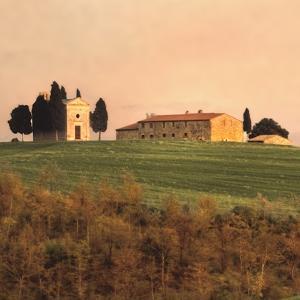 Evening Light, Tuscany by Elizabeth Carmel