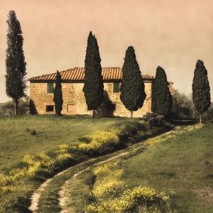 Tuscan Farmhouse by Elizabeth Carmel