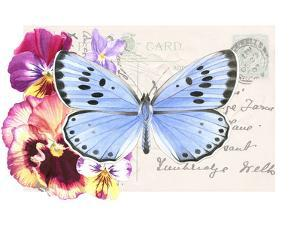 Pansy Blue Butterfly by Elizabeth Hellman