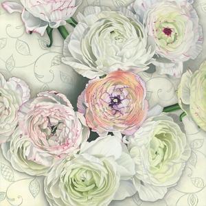 Ranunculus by Elizabeth Hellman