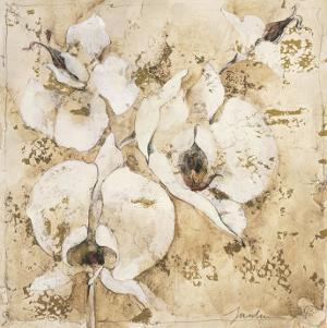Fragrant Snow I by Elizabeth Jardine