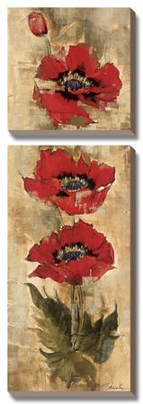 Strand of Poppies I by Elizabeth Jardine