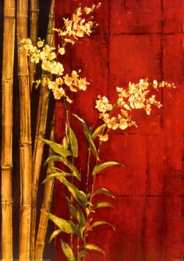Zen Contemporary by Elizabeth Jardine
