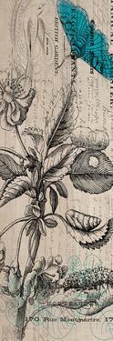 Botanical 10 by Elizabeth Jordan