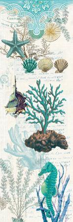 Coral curtain by Elizabeth Jordan