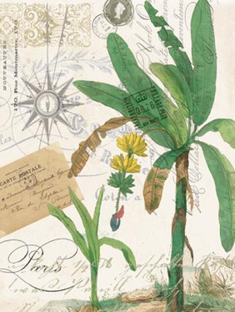 Palm Rectangle 2 by Elizabeth Jordan